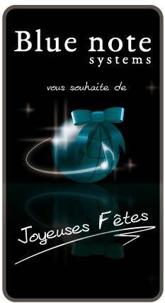 Décembre 2010 : Bonnes fêtes et heureuse année 2011 !