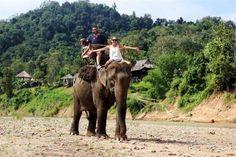 montar en elefante en laos