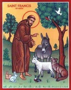 san francesco e l'asino