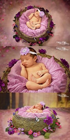 Newborn photoshoot, baby photoshoot, newborn photo session, photo shoot, newborn photography, purple, butterfly, fairy, fairytale, baby girl, flowers, Princess, frozenintimephotographydesign, frozen in time photography design