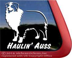 Haulin' Auss   Australian Shepherd Vinyl Decal #nickerstickers #haulinauss #vinyldecal #australianshepherds #australianshepherddecal