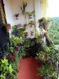 32 Space Saving Ideas Beautiful Balcony Designs with Modern Hanging Planters. Hanging planters save space and earn balcony designs far more functional. Apartment Balcony Garden, Small Balcony Garden, Small Balcony Decor, Apartment Balcony Decorating, Balcony Plants, House Plants Decor, Apartment Balconies, Balcony Design, Terrace Garden