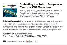 DCO Early Career Scientists Publish First Paper in Frontiers Special Research Topic | Deep Carbon Observatory Portal