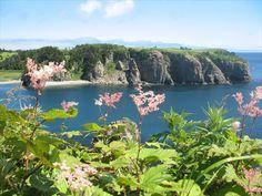 Планы на этот месяц - о. Шикотан, Новая Зеландия на Курилах!