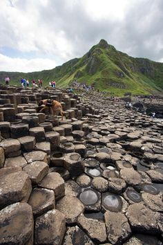 Giant's Causeway, Antrim, Northern Ireland by backpackphotography