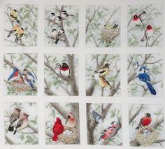 12 Block Fabric Panel Beautiful Bird Quilt Squares Chickadee Bluejay Cardinal | Crafts, Fabric | eBay!