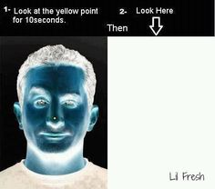 This is SO cool. Look at the yellow dot on the first pic for 10 seconds then look into the white box....made my morning!