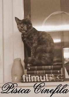 I like reading.