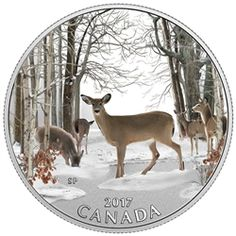 """Item specifics Seller Notes: """"Guaranteed authentic, with serial numbered Certificate of Authenticity issued by the Royal Canadian Mint. New, in original Mint packaging. Real photos of real, in-stock coins — not just stock artwork from the Mint. Canadian Forest, Buy Gold And Silver, Canadian Coins, Coin Store, Woodland Creatures, Canadian Artists, Coin Collecting, Silver Coins, Deer"""