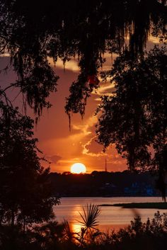 sunset cielo atardecer Sunsets in Savannah - sunset Sunset Pictures, Nature Pictures, Beautiful Landscapes, Beautiful Images, Sunset Background, Amazing Sunsets, All Nature, Beautiful Sunrise, Jolie Photo