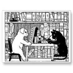 Cat and dog, together in the library