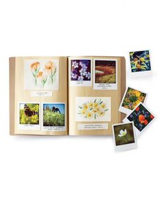 Nature Notebooks: Instead of picking and pressing wildflowers, which depletes the local flora and is illegal in some places, take a snapshot with your smartphone. Using a software program make the snaps feel more vintage. Flower Press Book, Journal Inspiration, Ideas Bautizo, Crafty Projects, Projects To Try, Activities For Kids, Crafts For Kids, Nature Activities, Learning Activities