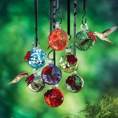 Glass Droplet Hummingbird Feeder – Southwest Gardener