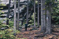 Dlaczego powinieneś odwiedzić Rudawy Janowickie?   Raczejtrampki Polish Mountains, Spa, Plants, Travel, Geography, Viajes, Destinations, Plant, Traveling