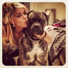 Bubba English mastiff X american bulldog soooooo cute! He's my world and my main squeeze! ❤❤