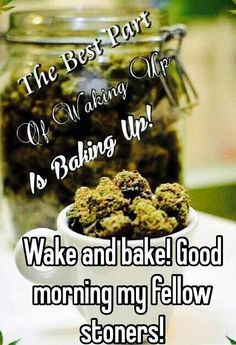 420 Quotes, Stoner Quotes, Funny Quotes, Medical Marijuana, Cannabis, Happy 420 Day, Stay High, Wake And Bake, Smoke Weed