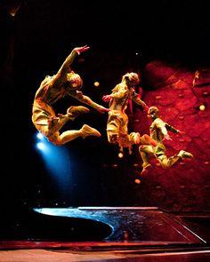 """Cirque du Soleil """"Ovo"""""""