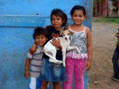 World Vets International Aid for Animals. www.worldvets.org