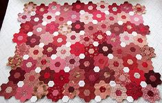 Grandmother's Flower Garden quilt / hexagons in reds - I like the placement of the white spacers, perhaps use green with my blue flowers?