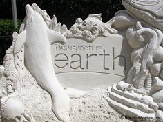 IMG_1041-WDW-EPCOT-sand-dolphin-EARTH
