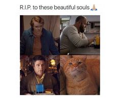 I almost cried right when I knew the cat was gonna die