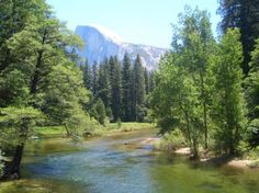 Yosemite National Park   Contest] Win Tickets to Yosemite National Park