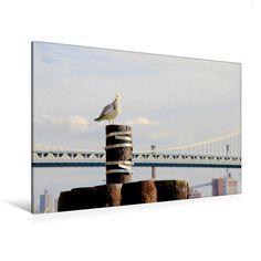 Möwe vor Manhattan Bridge (Premium Foto-Leinwand 45x30 cm, 75x50 cm, 90x60 cm, 90x60 cm)