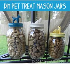 DIY Pet Treat Mason Jars. These are so cute and look easy to do. Cute enough to leave out!