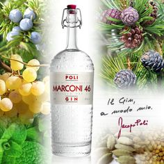 Marconi 46 is an italian gin artisanally distilled and obtained from a unique infusion of juniper berries, muscat grape, mountain pine, cembra pine, mint, cardamom and coriander reminding of the Asiago plateau in the north of the Veneto region, where the Poli family comes from.