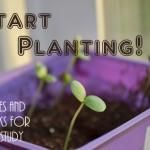 Ideas for gardening unit (book list/activities)