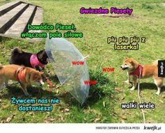 #pies #piesel #kwejk #humor Fan Art, Memes, Funny, Anime, Fanart, Ha Ha, Anime Shows, Hilarious, Entertaining