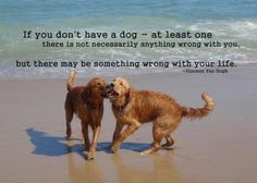 Van Gogh Dog Quote = Truth.❤❤❤❤❤❤