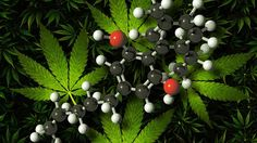 Products that contain a cannabis-based ingredient called cannabidiol or CBD are medicines, UK regulatory body the MHRA says.