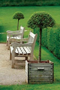 outdoor bench in light wood, modern furniture in the garden with green lawn Source by agathedelpont