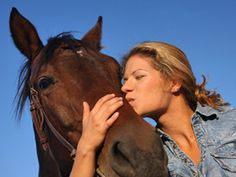 Believing in Your Horse: Turn Training into Knowledge