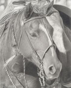 """""""A friend in Arizona took a photo of this horse, a working quarter horse. What drew me to the horse was its determination and concentration. That's why I titled the piece PAYING ATTENTION.""""  ~ McLarry Fine Art, Santa Fe, NM; www.howardhalbert.com."""