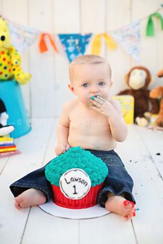 1 year photos, Cake smash photos, Dr. Seuss, 1st birthday session, © Lesli Bauer Photography 2014