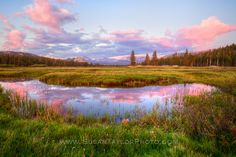 """""""Tuolumne Meadows Sunset Delight""""  My timing was excellent. I've loved Tuolumne Meadows since I started backpacking there as a young teen.This time of year makes it even more beautiful with the meadow being flooded which allows for so many rich reflections during a sunset like this.  Please share if you like! Thank you!  www.susantaylorphoto.com"""