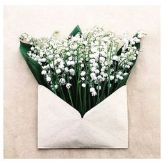 The French tradition on the 1 May is to offer beloved ones little posies of lily of the valley symbol of Spring  Regram from @chutmonsecret #mayday #fêtedumuguet