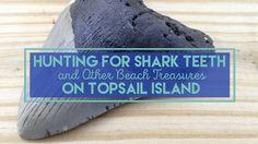 Hunting for Shark Teeth on Topsail Island NC