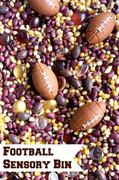 Football Sensory Play for Kids---Fun play idea for game day or little sports lovers. Inspired by the book Little Granny Quarterback by Bill Martin, Jr. Part of The Virtual Book Club for Kids. Sensory Tubs, Sensory Boxes, Sensory Activities, Sensory Play, Preschool Activities, Autumn Activities, Preschool Projects, Sports Activities, Book Activities
