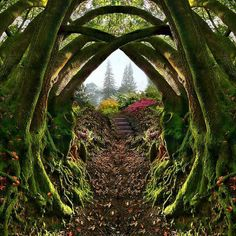 Entrance to the Secret Garden, Portland, Oregon , by architect41  Portland's Secret Garden: Leach Botanical Garden from Leach Botanical Garden on Vimeo.