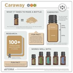 Essential Oil Safety, Essential Oils For Colds, Essential Oil Companies, Essential Oil Uses, Doterra Sandalwood, Sandalwood Essential Oil, Doterra Oils, Citrus Oil, Perfume