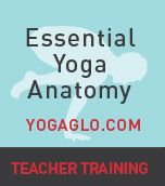Get information about Jason Crandell and his method of vinyasa yoga that combines power, precision, and mindfulness. Find a schedule, free yoga sequences, and information on yoga teacher training.