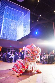 Traditional Chinese lion dance // W Photography // http://www.theknot.com/submit-your-wedding/photo/d1830340-c18c-4a10-8c23-99c44465d391/David-and-Betty