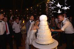 Nunta: Tg. Mures (Meniul, tortul si muzica)   Laura Cosoi