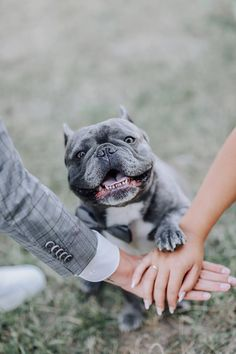 (notitle) Source by blairlloyd The post appeared first on Sawyer Dogs. French Bulldog Wedding, Pug Wedding, French Bulldog Tattoo, Wedding Fotos, Wedding Humor, Wedding Photoshoot, Wedding Pics, Wedding Ideas, Bulldogge Tattoo