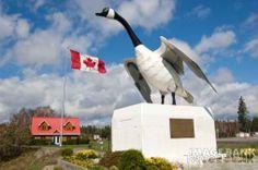 The Wawa Goose Red Lake, Ontario