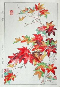 Welcome to SAKURA FINE ART - Online Art Gallery - Shin Hanga, Sosaku Hanga, Contemporary Japanese Woodblock Prints, Etchings, and Silkscreens. Asian Artwork, Japanese Artwork, Japanese Painting, Japanese Prints, Chinese Painting, Chinese Prints, Art Floral, Art Chinois, Art Japonais