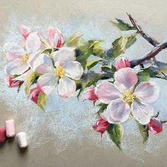 Так резко все зацвело у нас в городе. Кажется, что ещё вчера даже листьев не было, а сегодня утром уже Цветы. Очень красиво Так что мой утренний сторис вдохновил меня Вот такая яркая и солнечная веточка получилась. Бумага Derwent. #пастель #цветыпастелью #цветы #яблоня #softpastels #softpastel